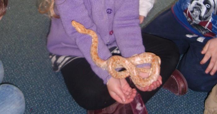 snakes-visit